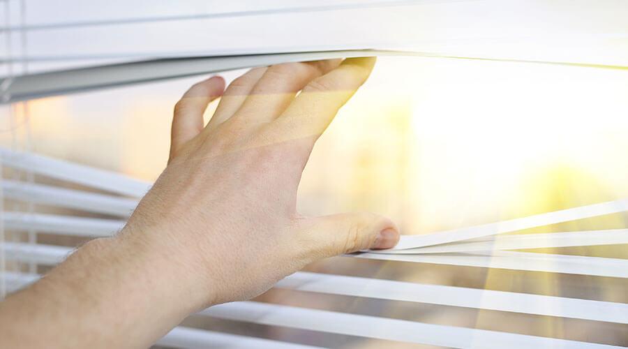 Sunny Window Blind